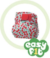 totsbots easy fit. I think they are cute and they are easy enough for dad to use !