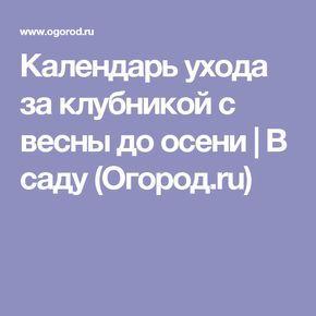 Календарь ухода за клубникой с весны до осени | В саду (Огород.ru)