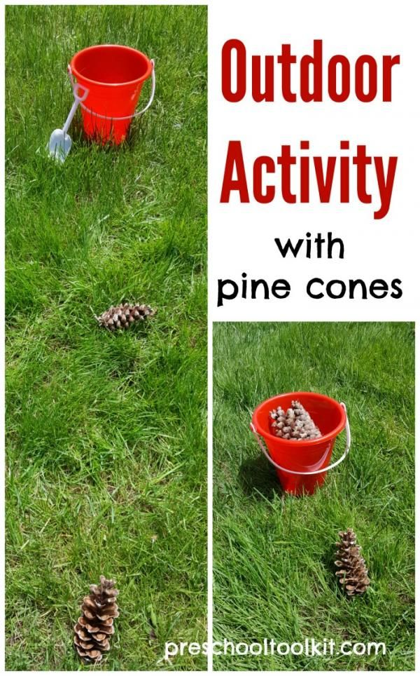 Outdoor activity with pine cones for kids