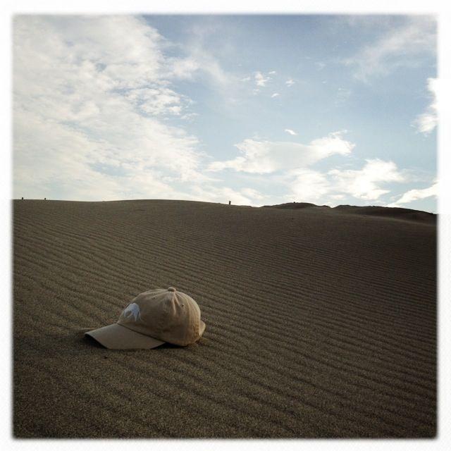 Landscape of sand