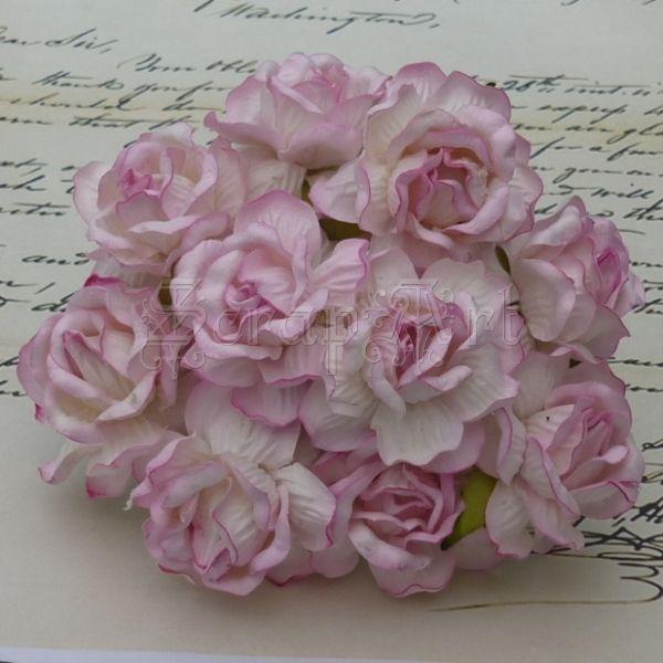 kytičky dekorační - Large 2-Tone Baby Pink Wild Roses