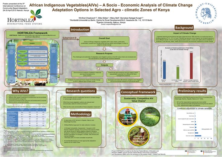 Project HORTINLEA: Adaptation options for growers of African Indigenous Vegetables   This poster describes a project that looked at how participants in the African indigenous vegetable (AIV) value-chain can benefit from CBA techniques.  The aim was to discover the challenges and potentials of CBA options and to assess the cost benefit of different approaches.  This project is based on the HORTINLEA framework - Horticultural Innovation and Learning for Improved Nutrition and Livelihood in…