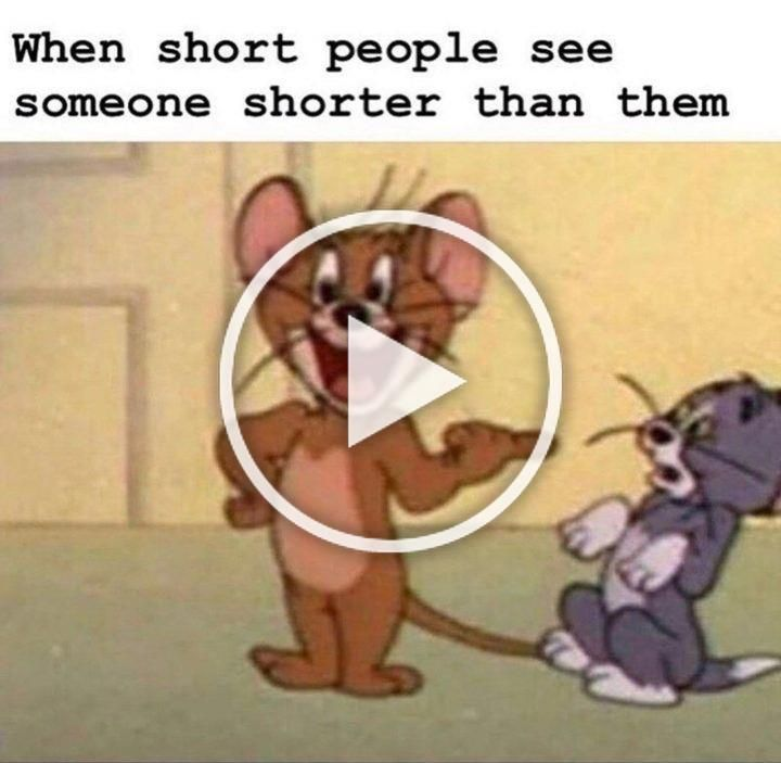 61 Funny Clean Memes When Short People See Someone Shorter Than Them Fun Diys Teenager Posts Funny Craft Videos
