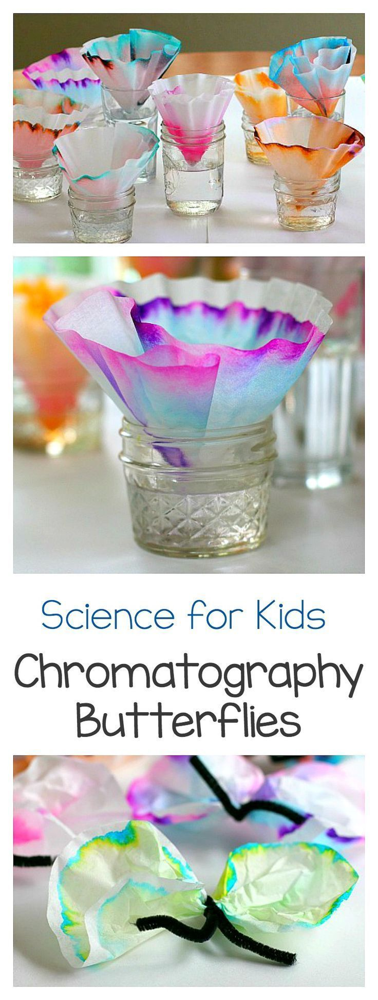 Art and Science for Kids: Explore chromatography using coffee filters and markers! Fun STEM / STEAM activity for children. Turn the results into a butterfly craft- perfect for spring! ~ http://BuggyandBuddy.com