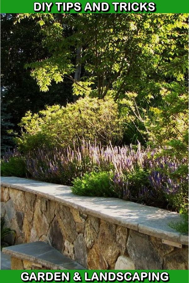 Helpful Landscaping Techniques For Creating The Perfect Yard With