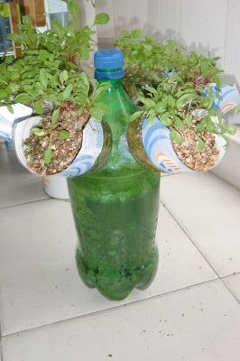 Urban Green Survival: Self Watering Propeller Bottle Garden. Dude knows what he is talking about + TIP FILL AND FREEZE PLASTIC BOTTLE BEFORE DRILLING!