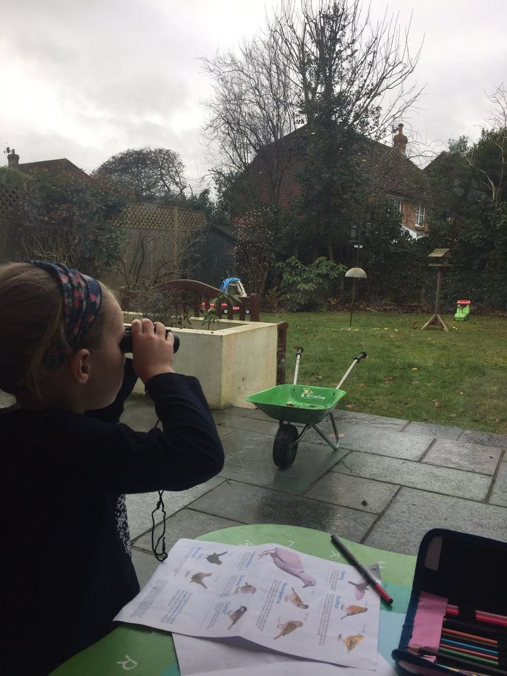 How was your Big Garden Birdwatch? What did you see? We'd love to see and hear all about it, even if you only saw wood pigeons its important to submit your results. No data is valuable and gives us an overview of the birds in you area. Submit your results at: http://natu.re/2gwCYwM