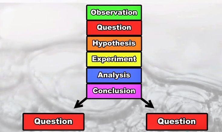 FREE Scientific Method Video Scientific method steps and terms.