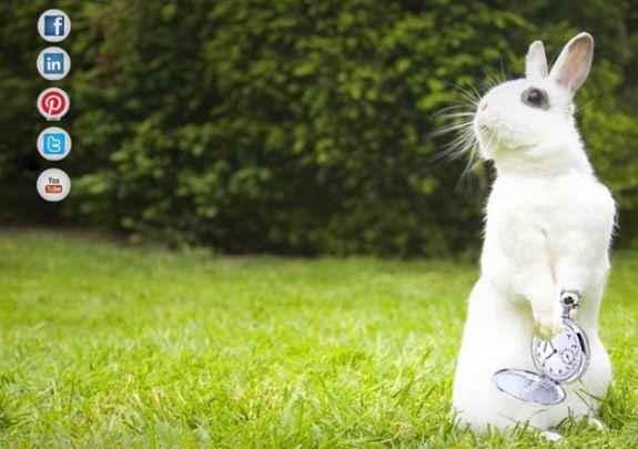 <<E' tardi! E' tardi! E' tardi!>> Ti capita spesso di correre in giro come il Bianconiglio? Senti di non avere mai abbastanza tempo? Leggi qui: http://www.osm1816.it/2013/07/non-ho-tempo-o-non-ho-idee/