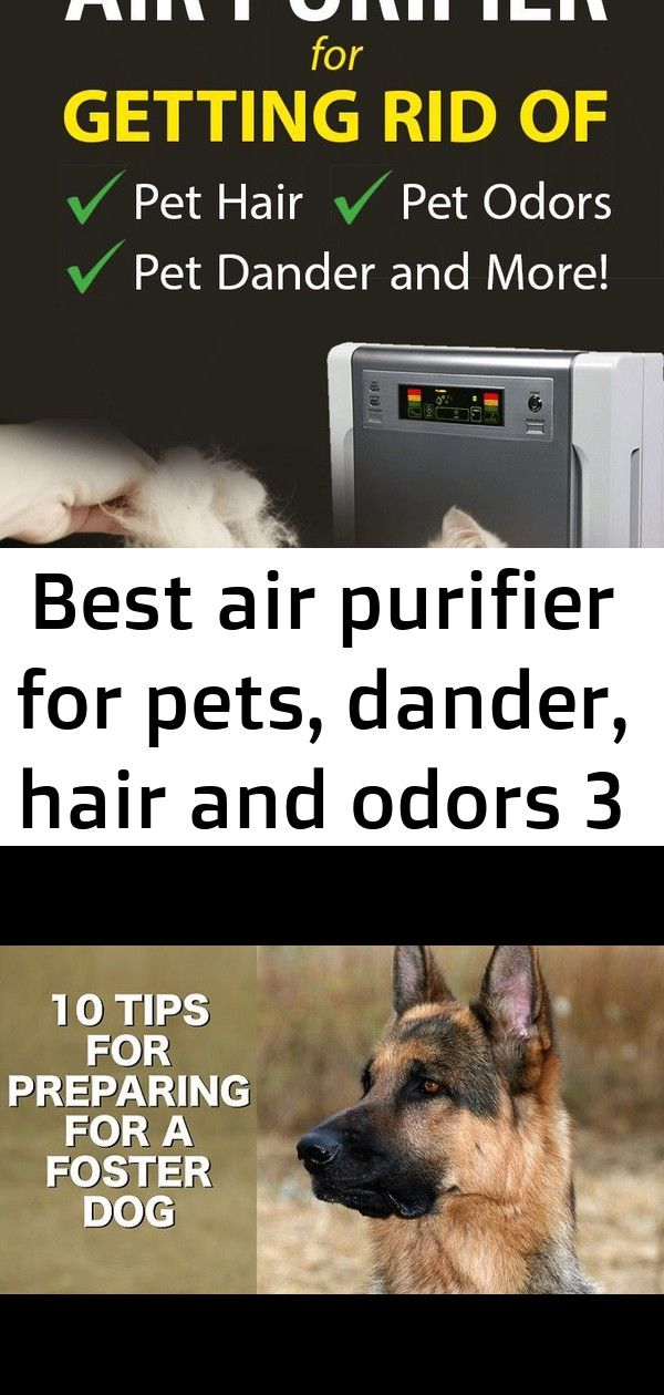 Is pet hair, odor or dander taking over your home? Find
