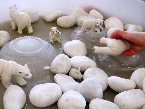 Frozen bowls of ice in a tray with white rocks & polar bears... Nice sensory activity!