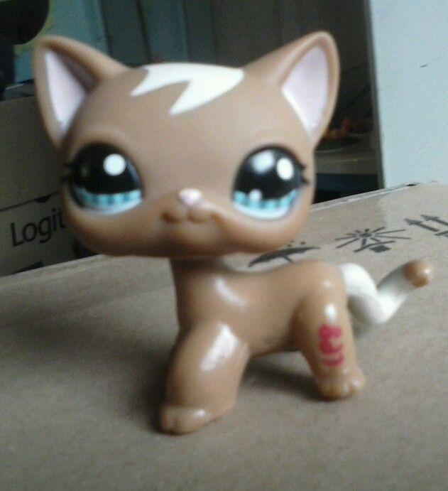 Littlest Pet Shop 1170/lps rare/lps lot/lps Cat/lps ranch cat/lps 1170/lps GUC #Hasbro