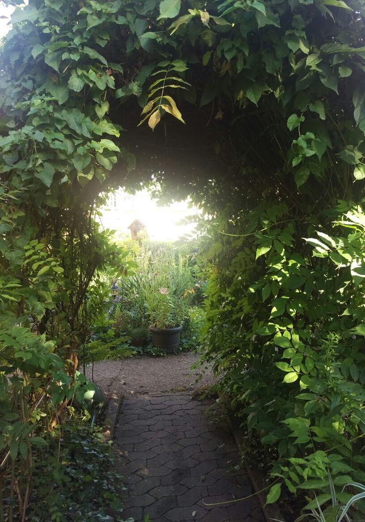 Eine meiner Lieblingsstellen in meinem Garten