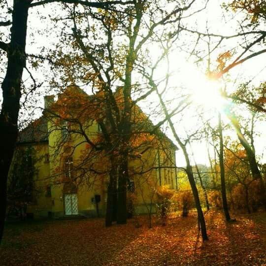 Ősz, autumn