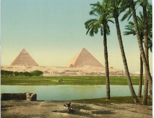 Les-Pyramides-Palmiers-et-pyramides-vintage-photochrom-photochromie-vintag