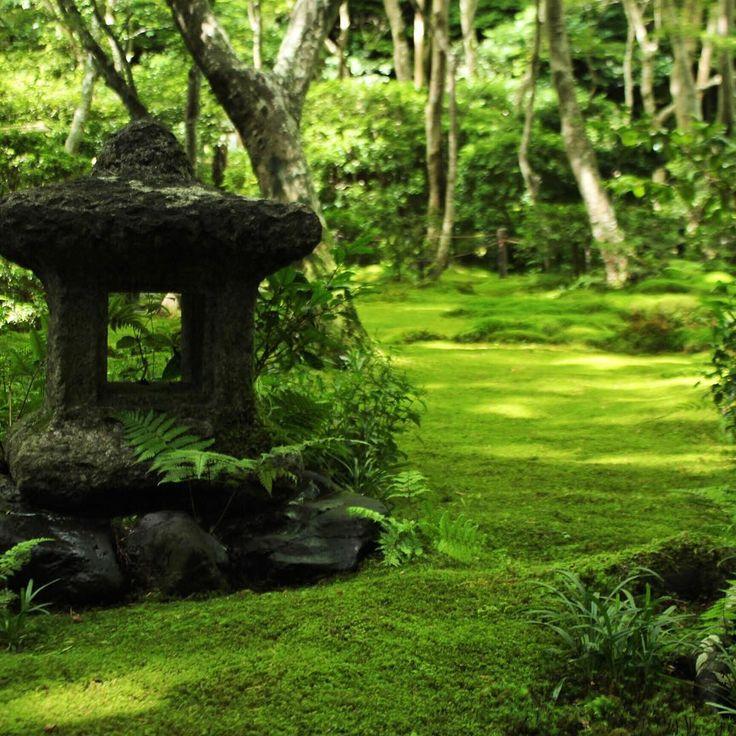 嵯峨野にある祇王寺。苔の庭がとても綺麗で、この日も暑い中2人体制で手入れしていました。派手さはないですが、個人的にかなりおすすめです。苔の種類も豊富です。 #kyoto #giouji #temple #garden #koke #green #summer #beatiful #sagano #travel #trip #kyototrip  #京都 #祇王寺 #嵯峨野 #嵐山 #庭 #苔 #美しい #緑 #おすすめ #旅 #旅行 #京都旅行