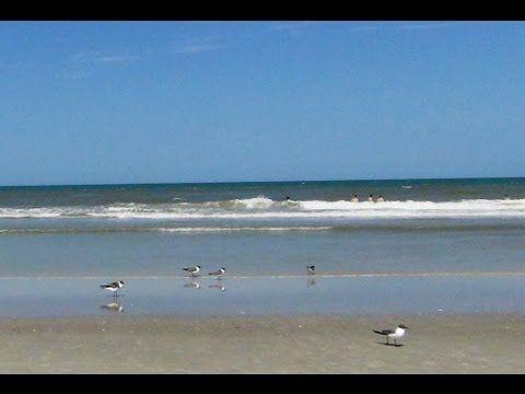 368. Америка. Пляж. Накупались от души. Флорида -- это здорово!