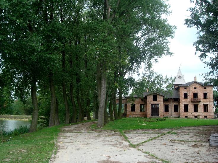 Niewikla - pałac i aleja dojazdowa