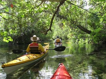 205 Best Images About Camping In Florida On Pinterest