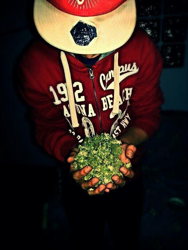 Alvarez weed