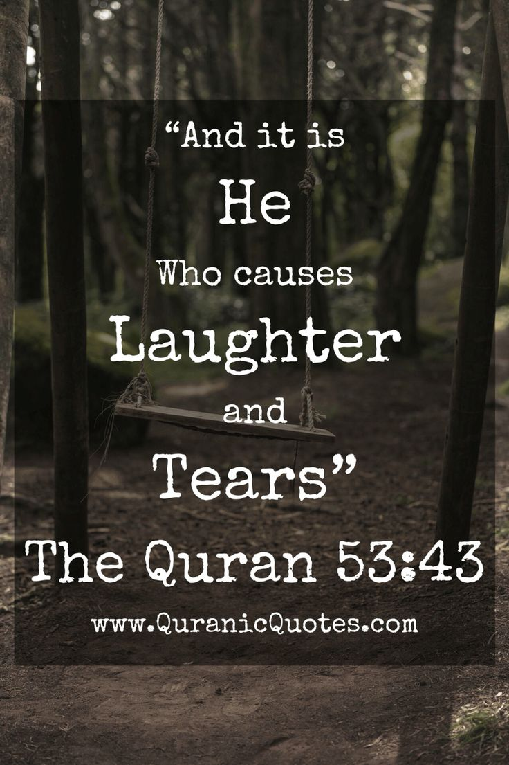 The Holy Quran                                                                                                                                                                                 More