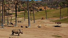 The San Diego Zoo Safari Park, formerly known as the San Diego Wild Animal Park, is a zoo in the San Pasqual Valley area of San Diego, California, near Escondido. It is one of the largest tourist attractions in San Diego County. The park houses a large array of wild and endangered animals including species from the continents of Africa, Asia, Europe, North and South America, and Australia