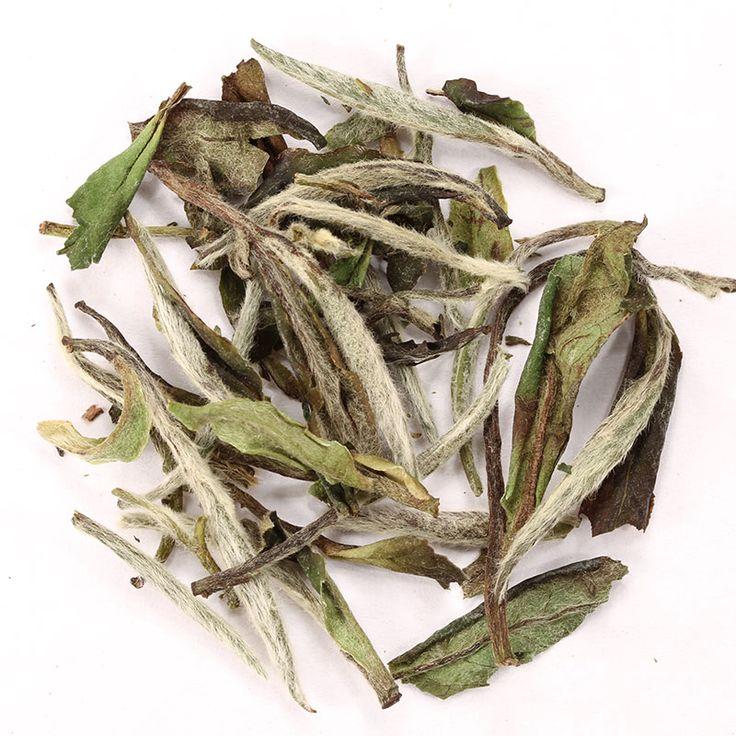 Té White Symphony // Una exquisita versión de la variedad Bai Mu Dan, este es un delicado té hecho de brotes sin abrir. Ligeramente floral, cálido y azucarado con notas a melón dulce o duraznos blancos.