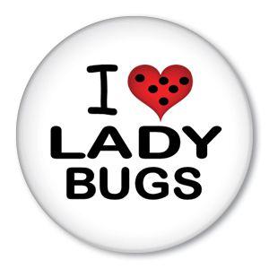 I love LADYBUGS!!!