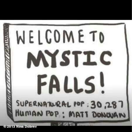 Vampire Diaries funnies