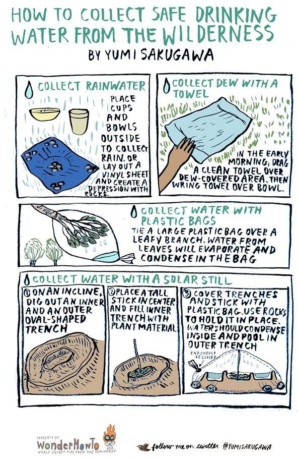 Explains how a food menu for backpacking is different from a camping trip with a cooler. Good for emergency packing too.
