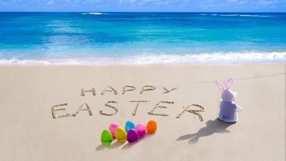 Happy Easter Bunny Happy Easter Bunny Happy Easter Pictures Easter Images Easter Bunny Images