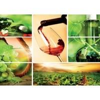 104VE XXXL - Icke-Vävd / Non-Woven Fototapet Wine Collage