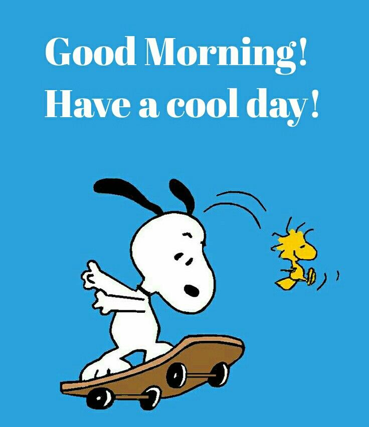 Good Morning Everyone Cheers Up We Have Changed : Gd morning snoopy good pinterest mornings