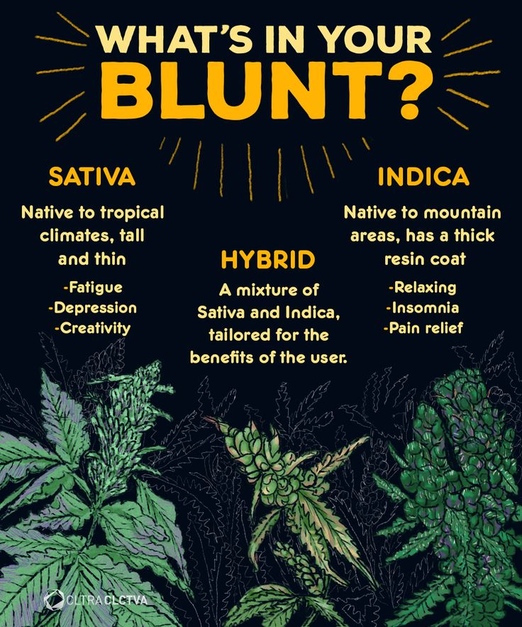 Do you rather Sativa, Indica or Hybrid? It's 4.20!