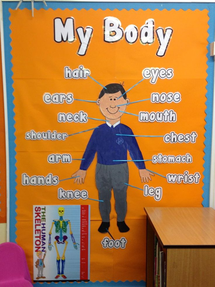My Body Parts Display, classroom display, class display, Ourselves, All About Me, bodies, body, body parts, Early Years (EYFS), KS1 & KS2 Primary Resources