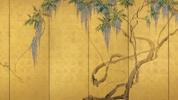 "Nezu Museum, Tokyo - ""Wisteria"" - Edo Screen exhibition (Jul 28 - Aug 26)"