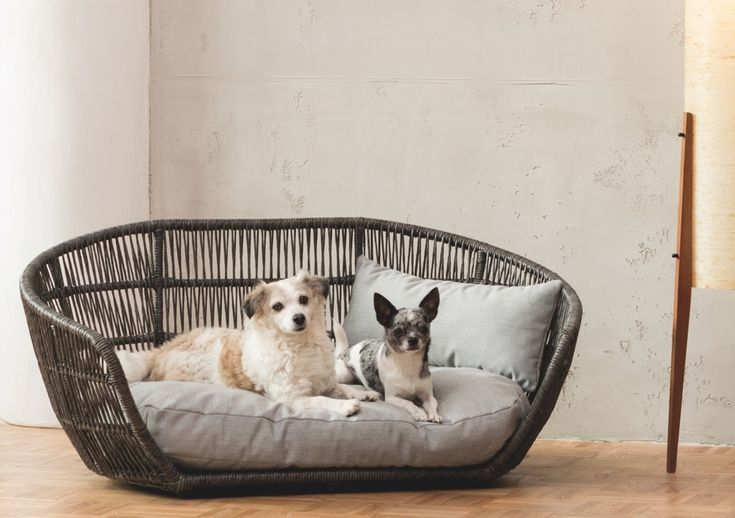 New Its Not Hard To See Why The Captivating Prado Dog Bed From Laboni Was The Dog Bed Large Indoor Dog Bed Beautiful Dog Beds