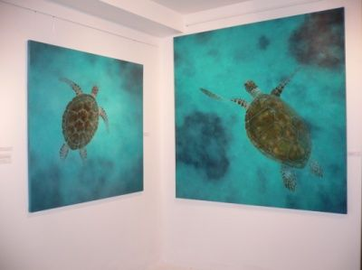 Two of my turtle paintings - oil on canvas, 1.2 x 1.2m and 1.8 x 1.8m, underwater art, turtle painting