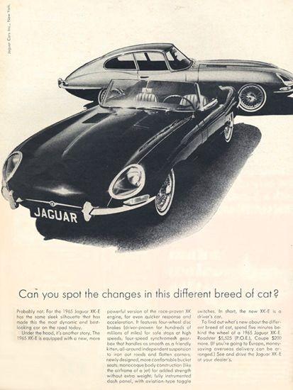 Jaguar 1965 XKE And E-Type  Status symbol, pride and sense of freedom.