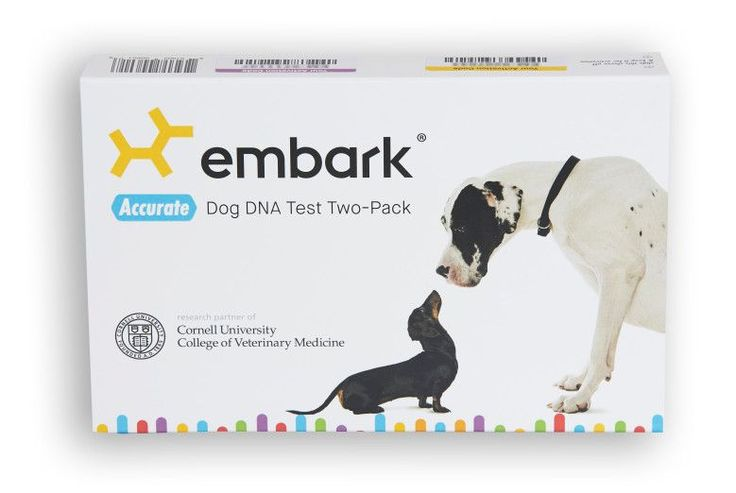 Finally, a way to see if your dog is lying about their background: @EmbarkVet raises $4.5 mil for canine DNA test .… #smm #socialmedia