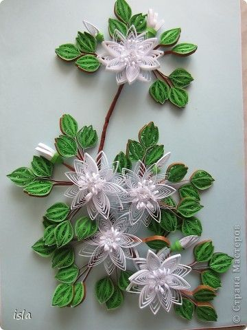 1181 best quilling flowers images on pinterest for Quilling strips designs