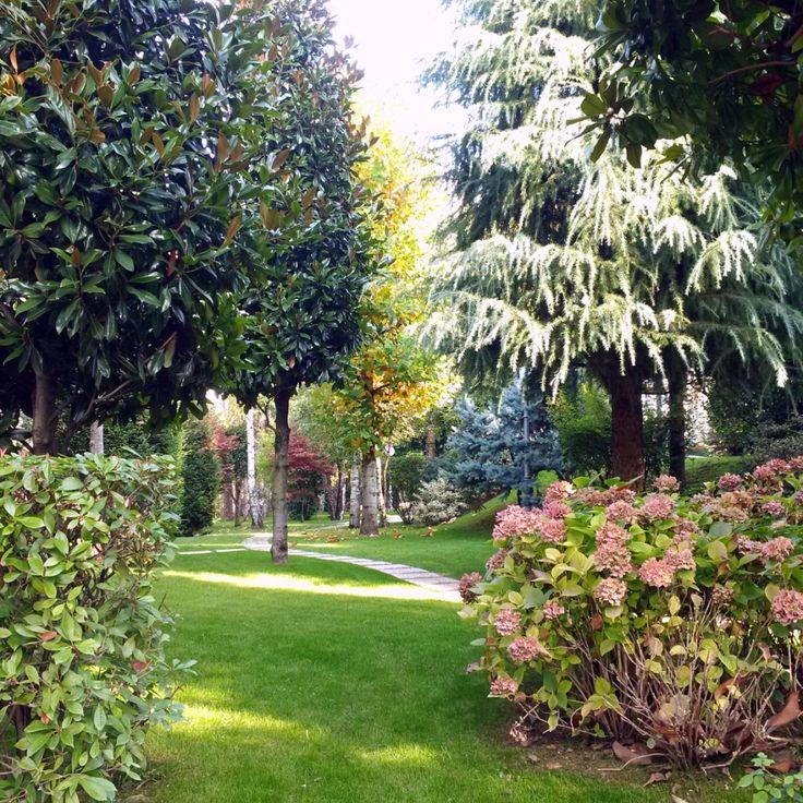 #giardino in zona temperata nel nord Italia con piante mediterranee che convivono #ottimamente con piante autoctone o naturalizzate