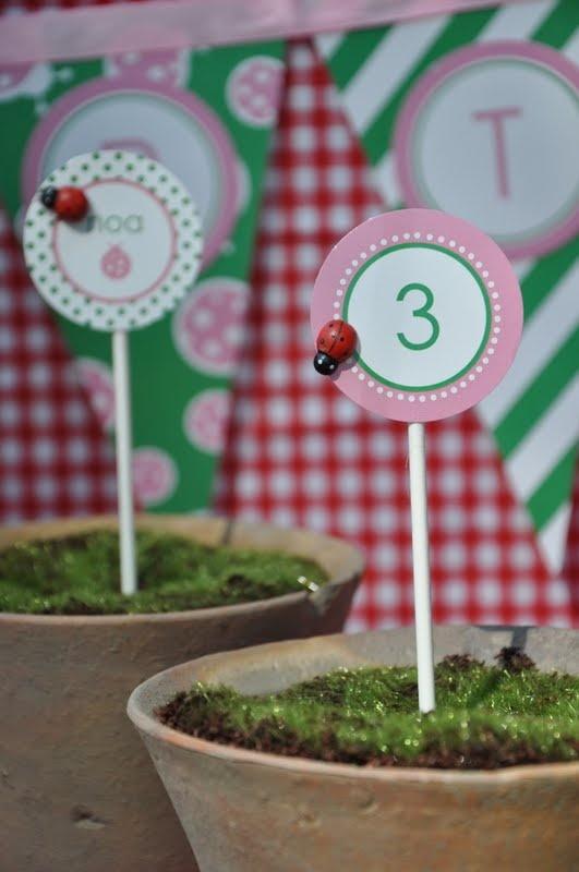 Garden Bug Birthday Party