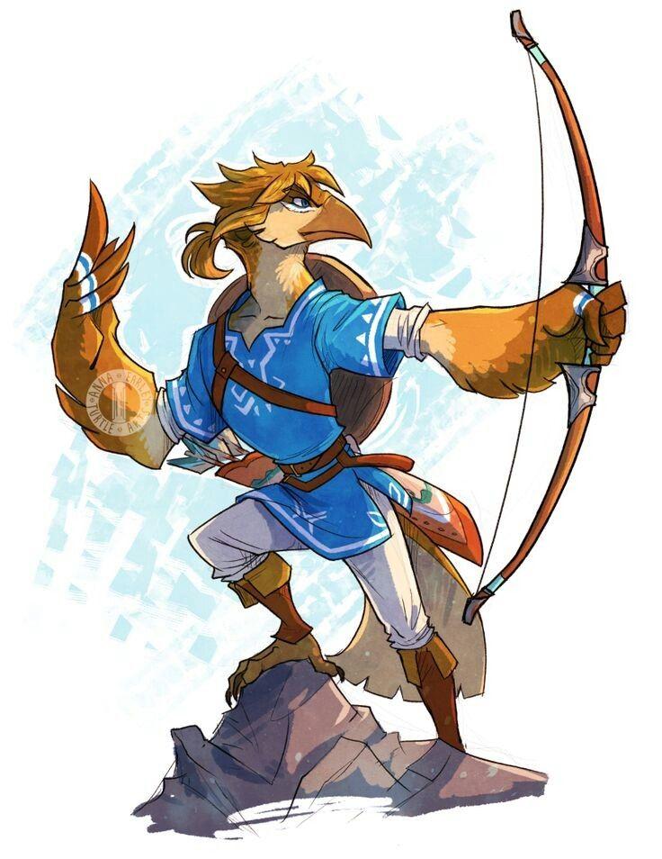 Rito Link Legend Of Zelda Legend Of Zelda Characters Legend Of