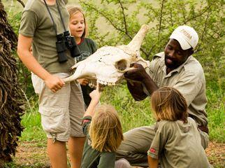 Kids love the interactive learning on safari.