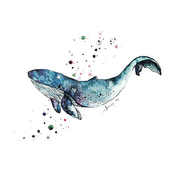 Art Print Watercolor Blue Whale, Home Decor, Ocean Art Print, Sea Life... ($6.99) ❤ liked on Polyvore featuring home, home decor and wall art