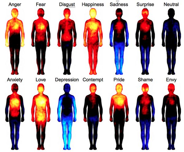 People feel sensations in different parts of their bodies when they experience emotions - Imgur