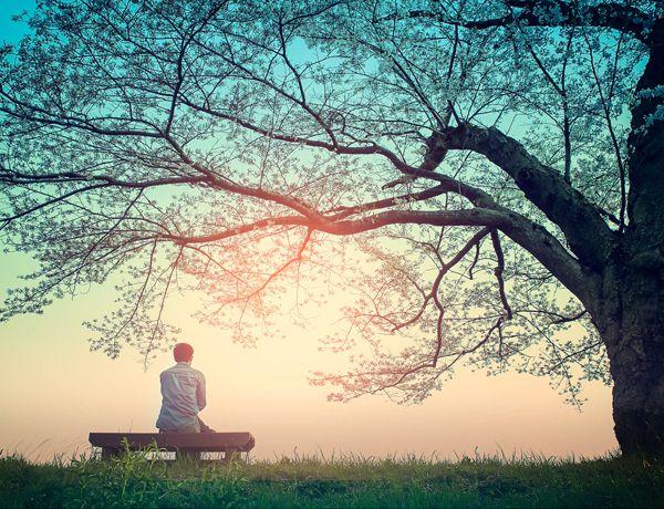 Det är inte lätt att skapa tystnad omkring sig. Ljuden som omger oss från teven, radion, plinkande ljud från mobilen, trafiken eller samtal mellan människor gör oss trötta och tar energi. Prova att stänga av alla ljud och låt din hjärna vila. Då kan det hända spännande saker i ditt inre.