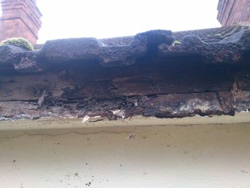 Damaged caused by old guttering.