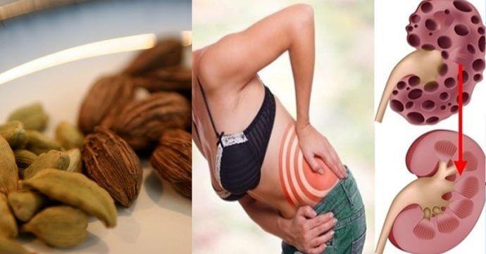 pročistí tělo Je známý pro své blahodárné účinky při léčbě a prevenci onemocnění ledvin a močového měchýře. Pravidelnou konzumací se snižuje krevní tlak a odstraňuje vápník z ledvin. zlepšuje trávení Káva s kardamonem pomáhá při trávení. Tajemství spočívá v tom, že kardamon zvyšuje průtok žluči, což zlepšuje trávení a zároveň uvolňuje křeče. Kromě toho odstraňuje …